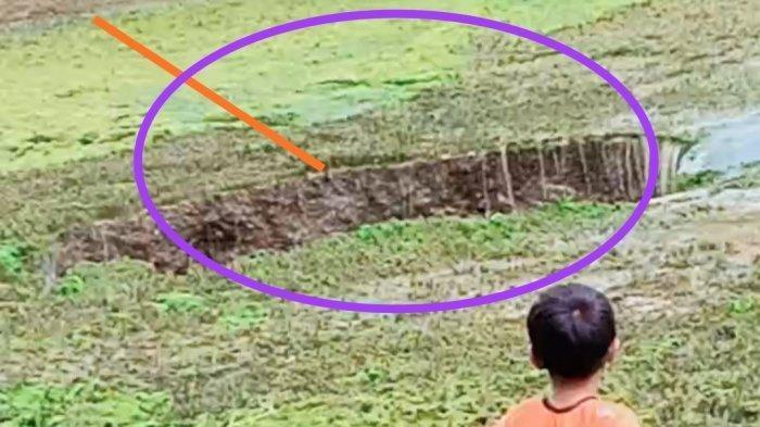 Warga Ungkap Soal Petunjuk Nenek Moyang Fakta Lubang Misterius Sedot Air Danau & Ikan di Sukabumi